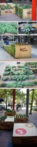 pod_planters_brissy