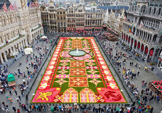brussels-flower-carpet