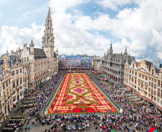 flower carpet 2014